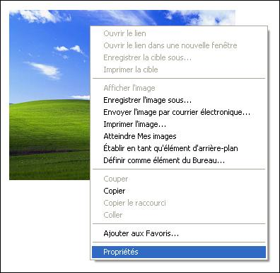 http://blueinvasion.free.fr/ressources/hfr/tuto_image/copier-adresse-image-ie-1.jpg