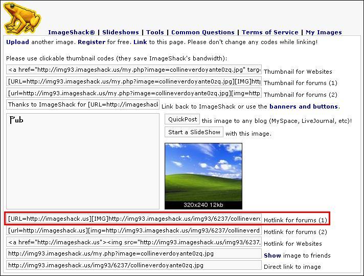 http://blueinvasion.free.fr/ressources/hfr/tuto_image/imageshack-upload-termine-hotlink.jpg