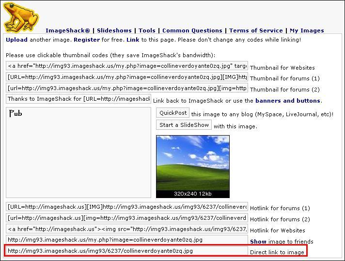 http://blueinvasion.free.fr/ressources/hfr/tuto_image/imageshack-upload-termine-simple.jpg