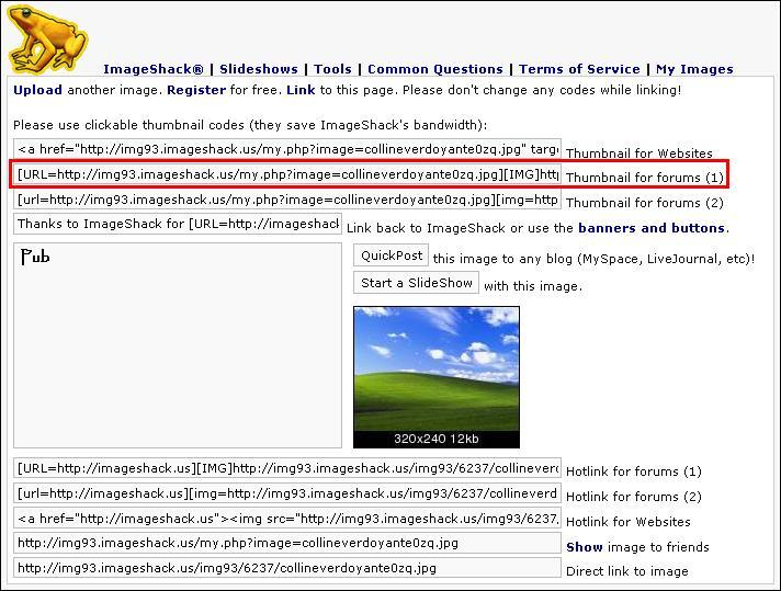 http://blueinvasion.free.fr/ressources/hfr/tuto_image/imageshack-upload-termine-thumbnail.jpg